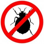 bedbugs 150x150 photo (vapor steam cleaners industrial cleaning bed bugs green building )