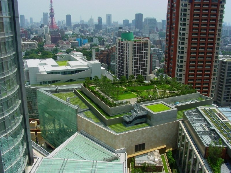 Financial Incentives for Green Roof Retrofits