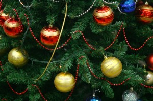 Christmas Trees Trigger Allergies This Season