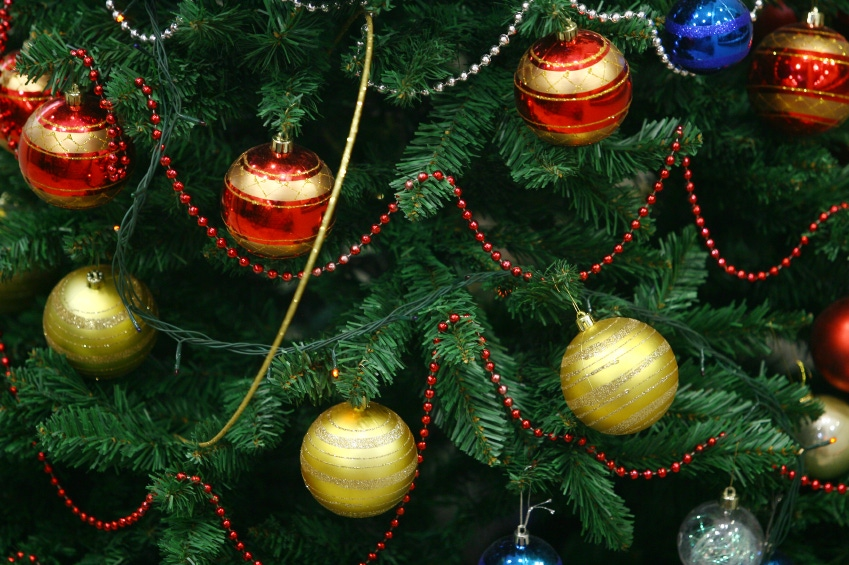 Merry Moldmas? Christmas Trees Trigger Allergies This Season