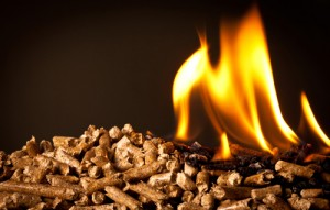 Boosting Biomass: New Senate Bill Looks to Improve Outlook