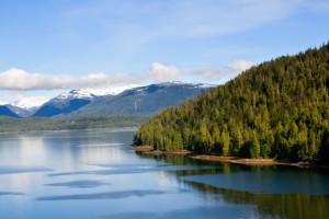 Shell Gets Go-Ahead to Drill Alaskan Coastline