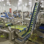 How FSMA Impacts Food and Beverage Manufacturers