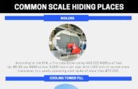 Infographic- Common Scale Hiding Places
